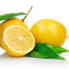 Dođavola s tim paranojama oko hrane! Osvrt na otrovni limun.