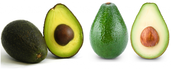 avocado-zelen-zreo